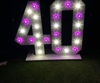 40 with White & Purple Bulbs