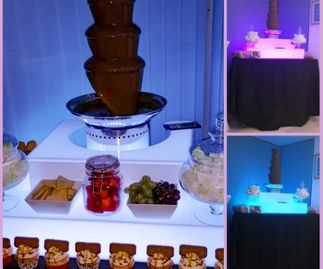 Chocolate Fountain with LED Surround
