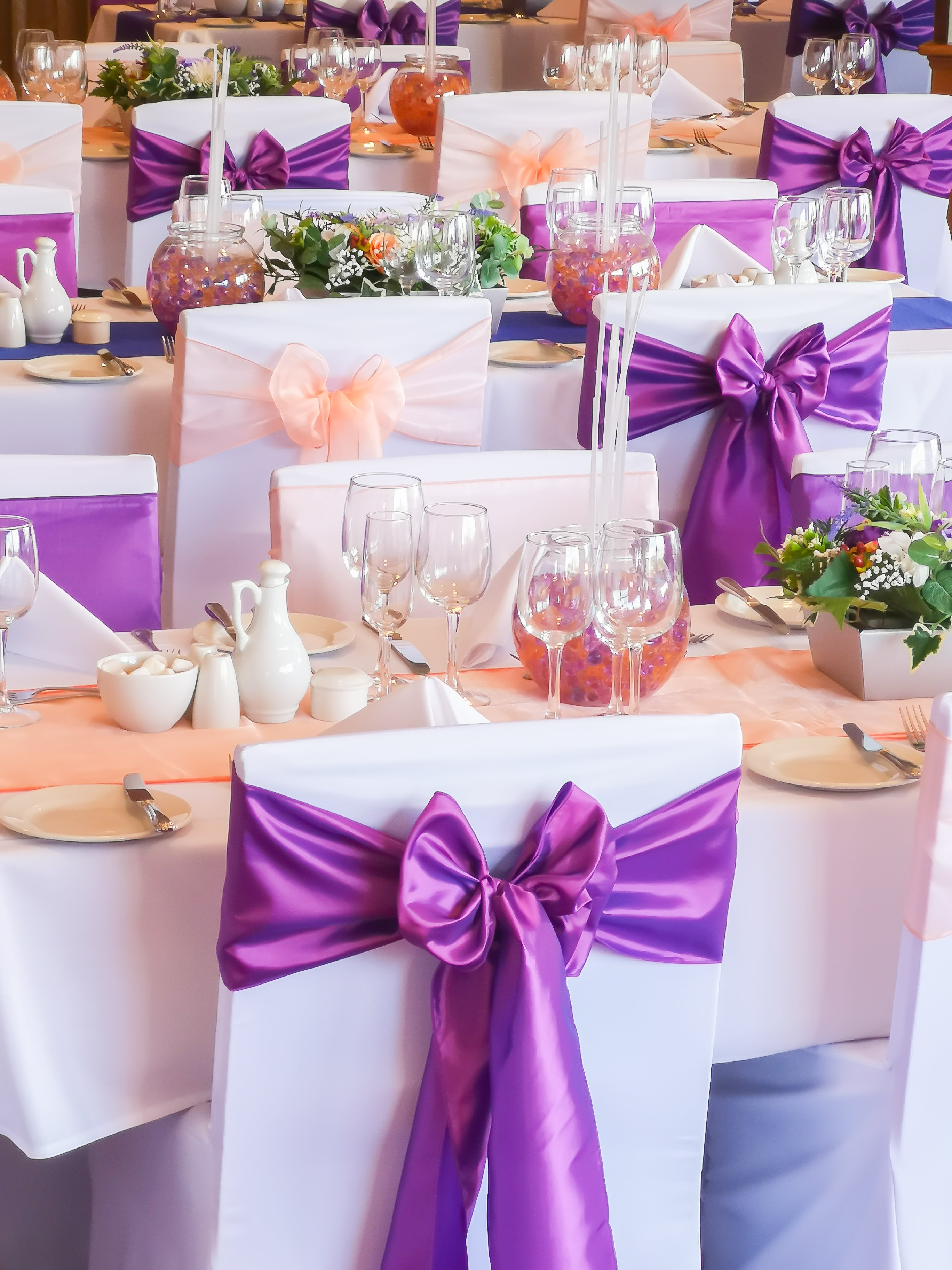 Purple Taffeta & Peach Organza