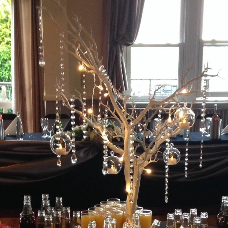 Manzanita Trees with candles